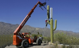 cactus-cell-tower