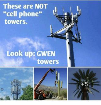 gwen33