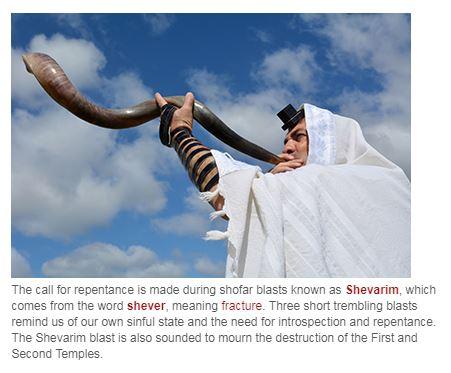 Shofar Shevarim Pic Descrip
