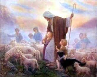 shepherd4