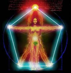Vitruvian-woman-man-L1