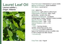 Laurel Leaf chemical properties Preservation